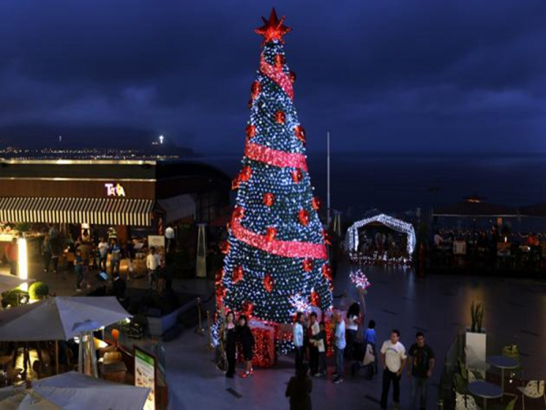 Led red white giant outdoor commercial lighted christmas tree sdsdssdsd mozeypictures Images